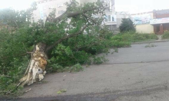 В Усть-Каменогорске бушевал ураган (ФОТО, ВИДЕО), фото-3