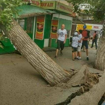 В Усть-Каменогорске бушевал ураган (ФОТО, ВИДЕО), фото-6